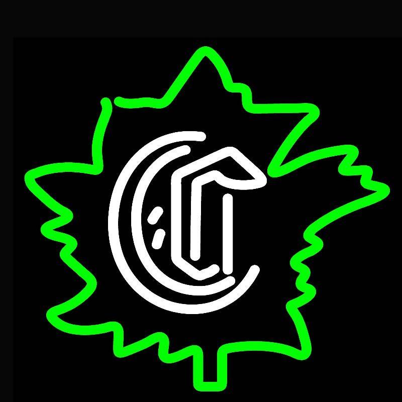 CE, EMC, LVD, RoHS-Zertifizierung 17 * 14inch Neonschild bar Bier Licht
