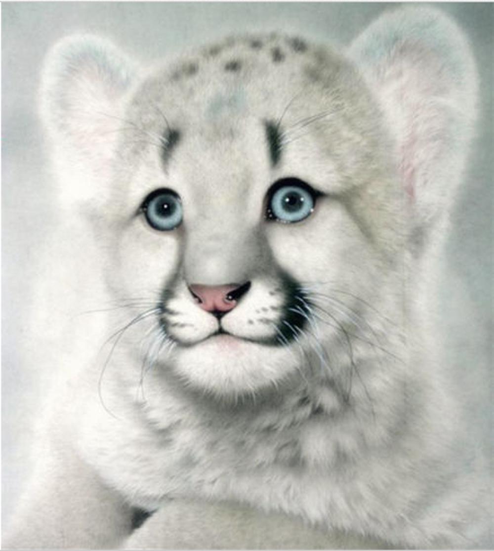 Tiere Netter Tiger 5D DIY Diamant-Malerei Home Decoration Wandmalerei von Diamant-Mosaik-Stickerei-Malerei