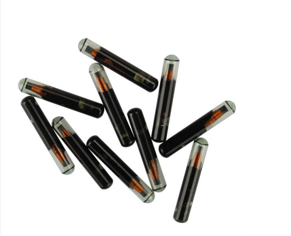 Пустой MINI ID4C стекла Чип (малый размер) 10pcs / серия
