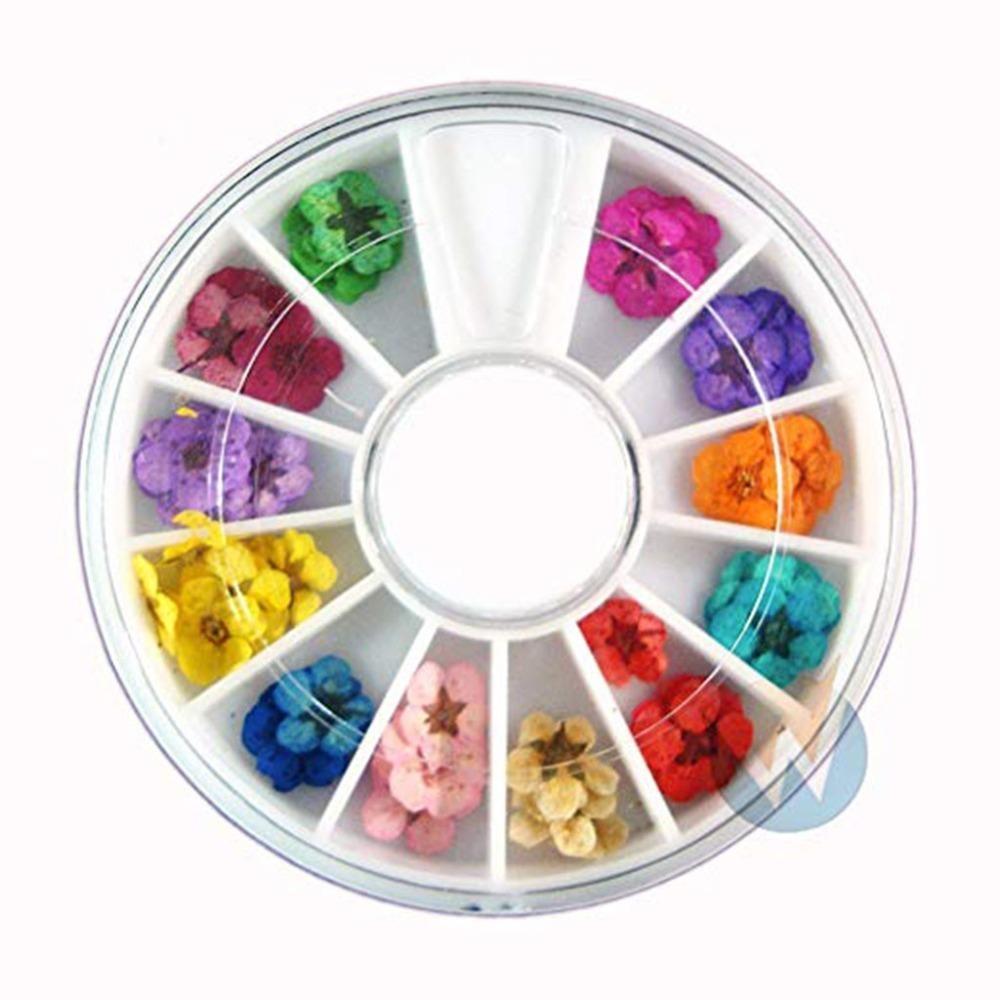 Prego Flor Seca Nail Art Deco / 12 Cores Flores Secas Secas Dicas de DIY Maquiagem Beleza Manicure Flores Secas Decorativas ** D