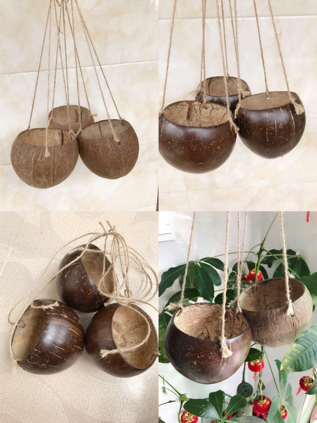 Посадочный бассейна висит корзину бытового украшения висит горшок кокосовой оболочки горшка кокосовой оболочки горшок творческий подарок