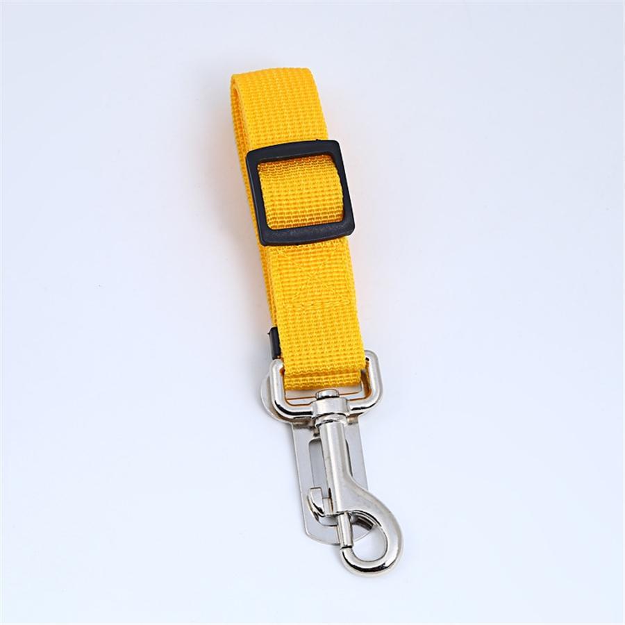 Leash de Long 5M cão retrátil para pequenas e grandes leash ligação Dogs automática Nylon Pet para a execução de Jogging # 420