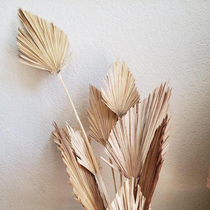 팜 팬 잎 팜 리프 팬 공장 DIY 파티 예술 벽 결혼식 장식을 매달려 말린 꽃 자연 건조