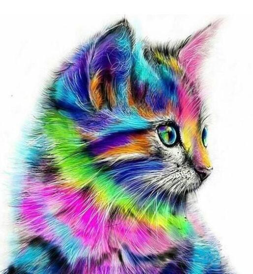 무서워 고양이 - 예술 손으로 만든 동물 예술 사진을 페인트 페인팅 캔버스 현대 홈 인테리어 캔버스에 성인 DIY를 그리기 위해 숫자 키트 페인트로