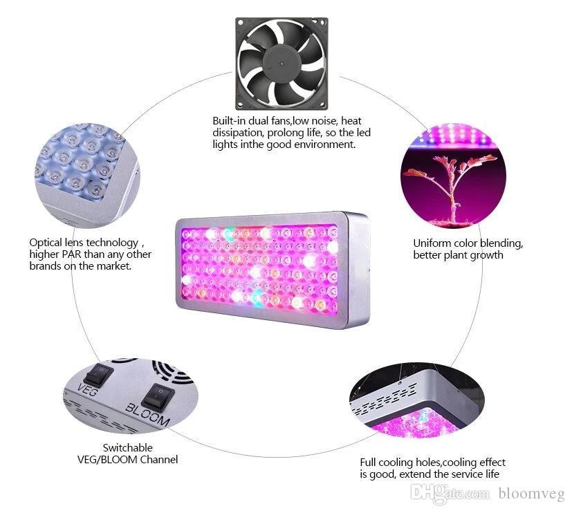 Bloomveg de alta potencia crece la luz 1000 W LED crece la lámpara del Panel de la luz para la planta hidropónica que crece el espectro completo