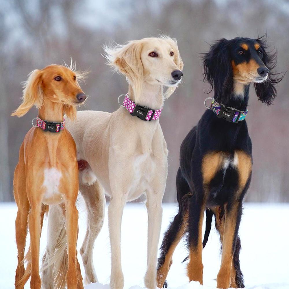 De ancho collar de perro para mascotas NYLON collares de perros Collar ajustable Collar pequeño perrito perros medianos para French Bulldog Pitbull