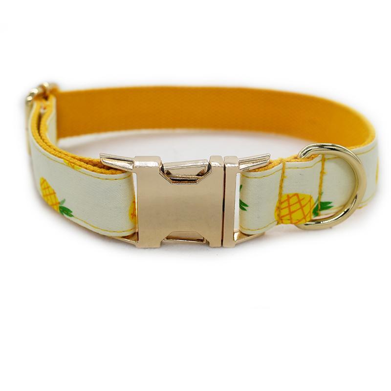 collares para mascotas, correas, etiquetas para dogos, rottweilers, caniches, etc, perro, perrito, correa de perro, para el perro
