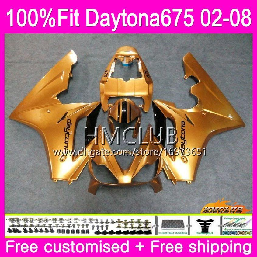 Injection Body For Triumph Daytona 675 02 03 04 05 06 07 08 43HM.10 Daytona675 2002 2003 2004 2005 2006 2007 2008 OEM Fairing Glossy golden