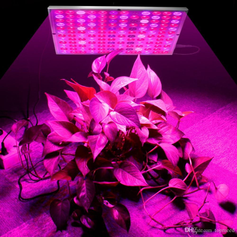 Wachsende Lampen LED Wachsen Licht 25W 45W AC85-265V Vollspektrum Pflanzenbeleuchtung Fitolampy für Pflanzen Blumen Sämling Anbau