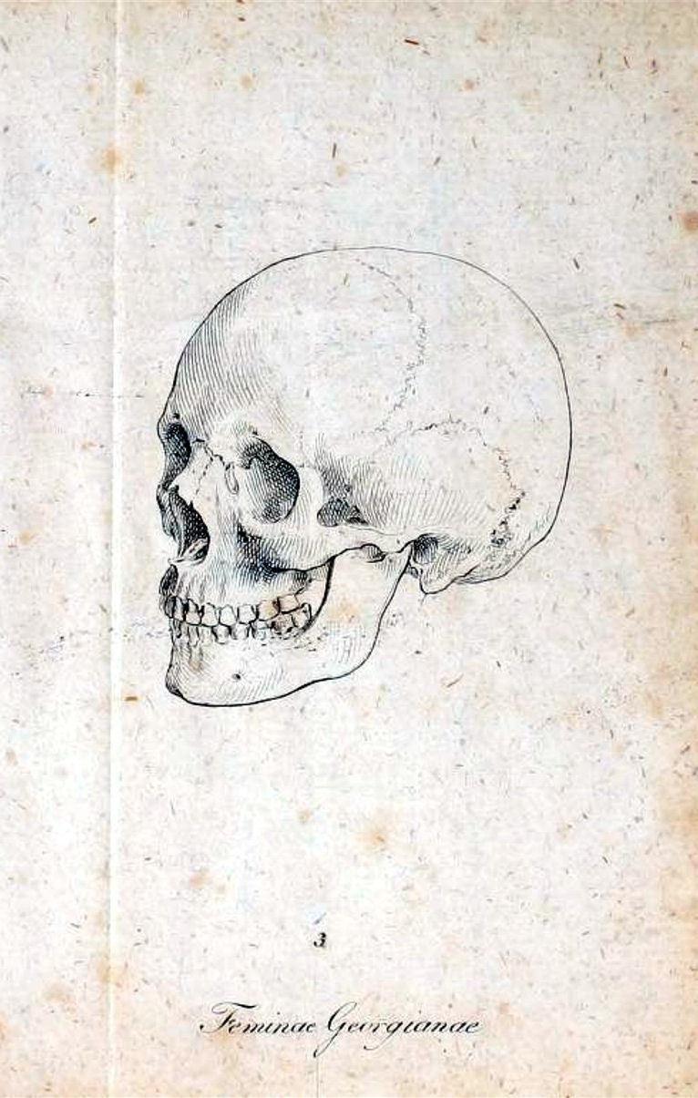 The Skull Art Art Poster en soie imprimé 24x36 pouces (60x90cm) 088