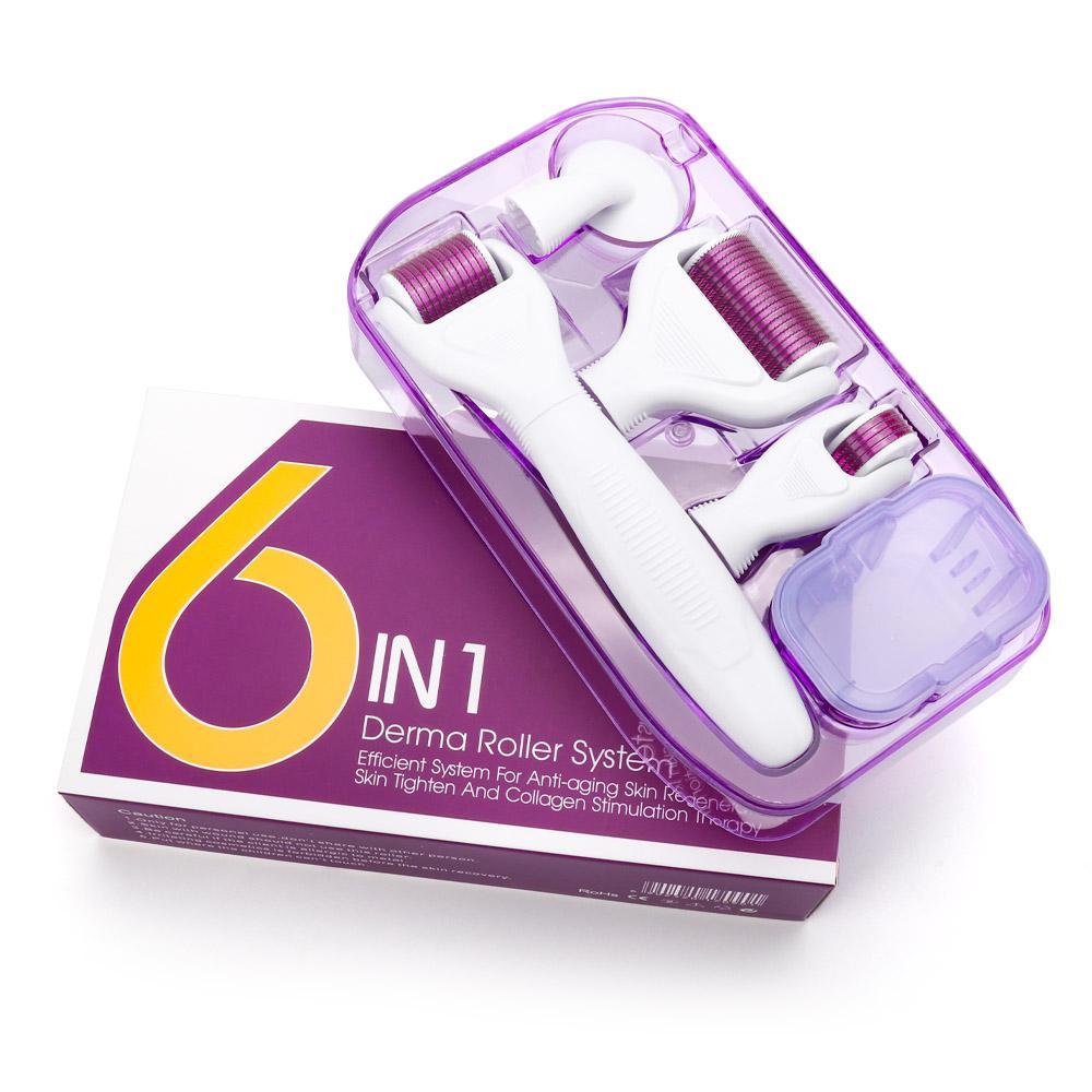 6 Cilt Bakımı ve Vücut Tedavisi İçin 1 Microneedle Derma Rulo Kiti Titanyum Dermaroller Güzellik Mikro İğne Yüz Rulo Cilt Bakımı içinde