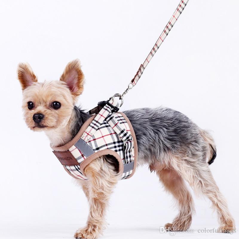 Açık Hayvan Köpek Tasması Moda Ayarlanabilir Pet Kuşakları Kayışlar Sevimli Teddy Yavru Küçük Köpek Pet Malzemeleri