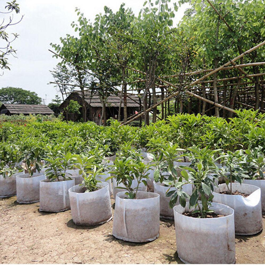 100pcs Grow Bag 55*45cm Plant Bags Non-woven Fabric Cactus Flower Grow Planters Pot or Home Storage Basket Bags Folding Flower Grow Bags