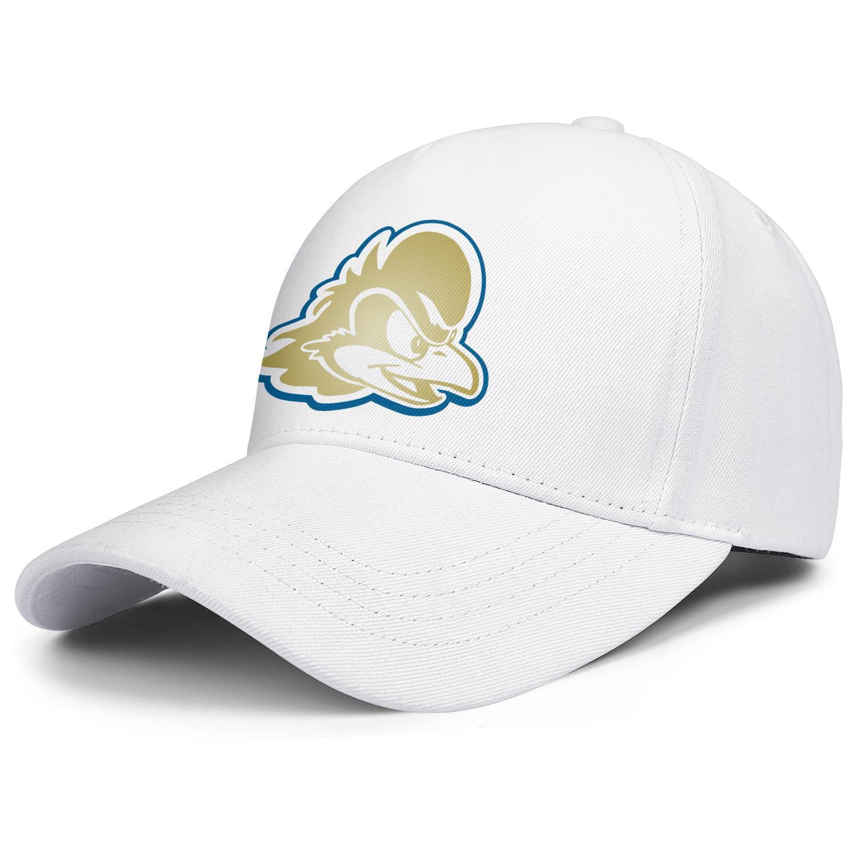 logotipo azul gallinas de oro de la moda de Delaware Fightin gorra de béisbol unisex Armarios equipo Trucke sombreros wordmark gris vieja impresión blanca de humo Gay Core