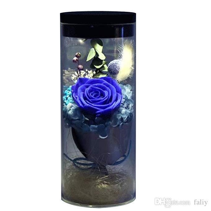 FALIY [2019 meilleur cadeau] fleur éternelle fraîche rose LED lumière colorée transformer lumineux arc en ciel frais rose 100% naturel00% naturel