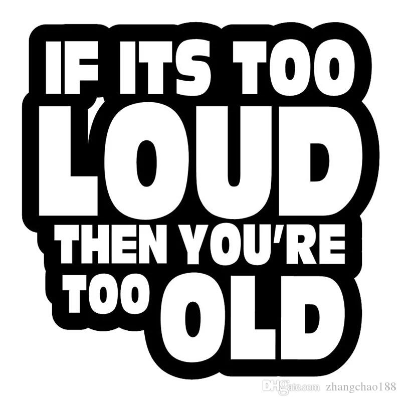 IF ITS TOO LOUD THEN YOURE TOO OLD FUNNY  VINYL DECAL STICKER MANY COLORS