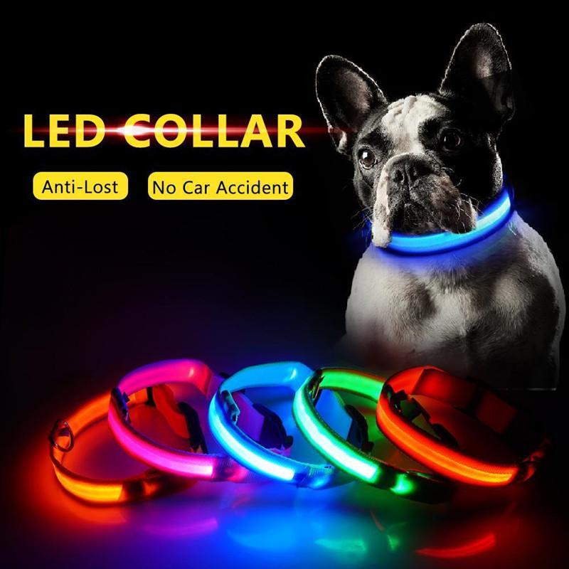 Ricarica USB LED Dog Collar Anti-Perso / Evitare collare Incidente per i cavi cuccioli cane cani Collari Supplies LED Pet Products