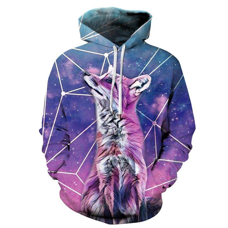 Cute Animal Fox Funny Hooded Sweatshirt Hoodies Men Women Hip Hop Autumn Streetwear 3d Print Hoody Tracksuit Unisex Jacket Couples Clothes