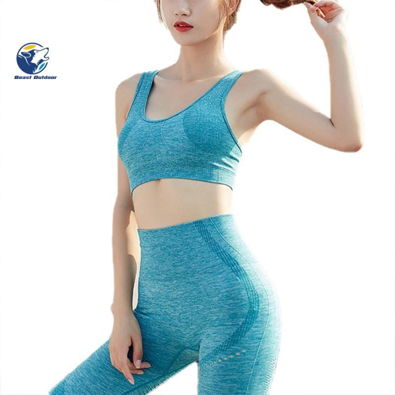 2 pezzi Workout Set senza giunte delle donne sexy Suit Yoga Abbigliamento sportivo Fitness Indossare tute Donne Palestra Palestra Abbigliamento Leggings Sport