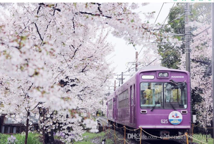 Photo personnalisés Taille train mur de fond TV fleurs de cerisier papier peint du salon moderne