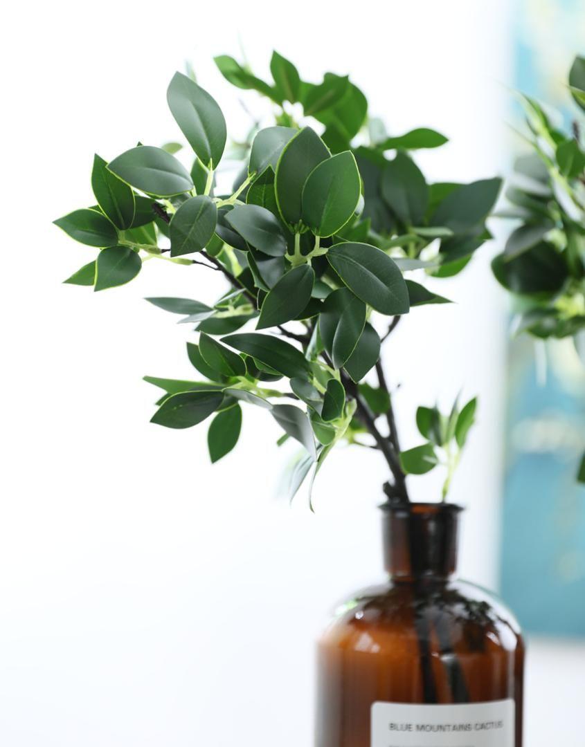 Tipi Di Piante Sempreverdi acquista sempreverdi banyan rami artificiali con foglie di eucalipto falso  il matrimonio a casa di natale decorazione floreale accordo a $37.57 dal