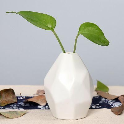 Seramik Vazo Kuru Çiçek Yaratıcı Basit Dekorasyon Ev Süsleme Avrupa Geometrik Şekilli Oyma Şişe Yüksek Kalite EEA1409Q-4