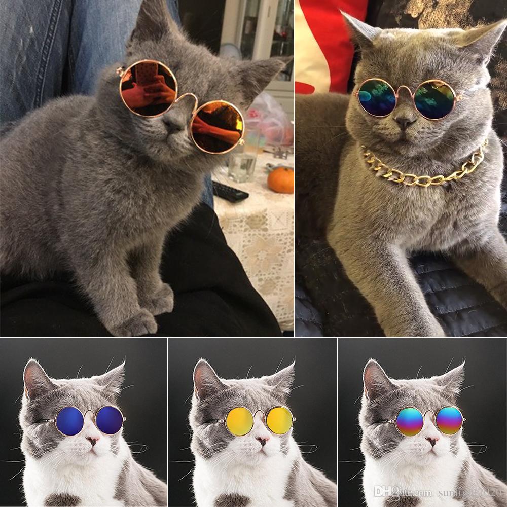 القطة الجميلة نظارات الكلب نظارات منتجات الحيوانات الأليفة ليتل القط الكلب العين ارتداء النظارات الشمسية الكلب صور مستلزمات الحيوانات الأليفة
