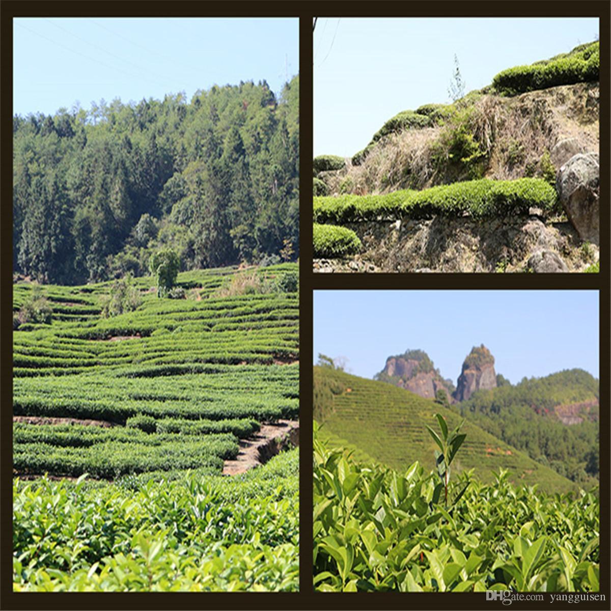 500g Çin Organik Yeşil Çay 4 Vakum paketleri Tayvan ALi Dağ Süt Ulun çayı Yeni Bahar Çay Yeşil Gıda Sıcak satış