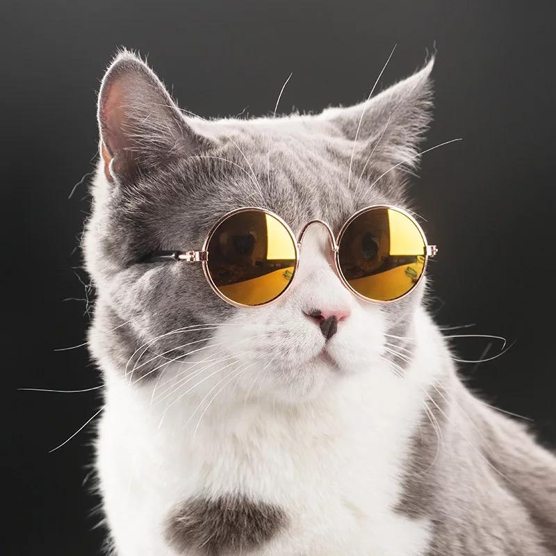 New Fashion Sunglasses gato de estimação Acessórios Verão Cães Gatos Óculos Grooming Eye-wear Verde Black