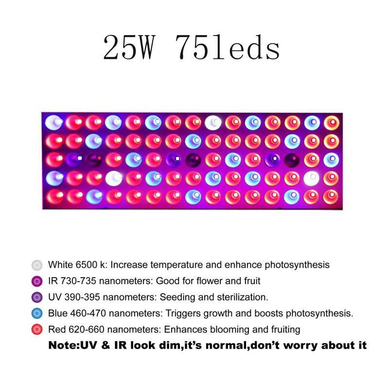 300W LED wachsen volles Spektrum Phyto Pflanzenwachstumslampe für den Innen Gemüse Sämling Blume Sämling Zelt fitolampy