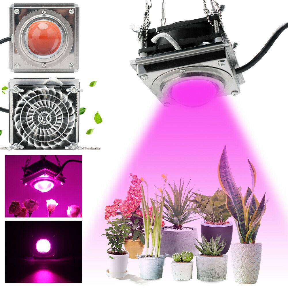 NEW 600W LED Grow Light COB Growing Lamp Full Spectrum Grow Lamp LED Grow Light for Indoor Plant With Cooling Fan For Indoor Plant Bloom Veg
