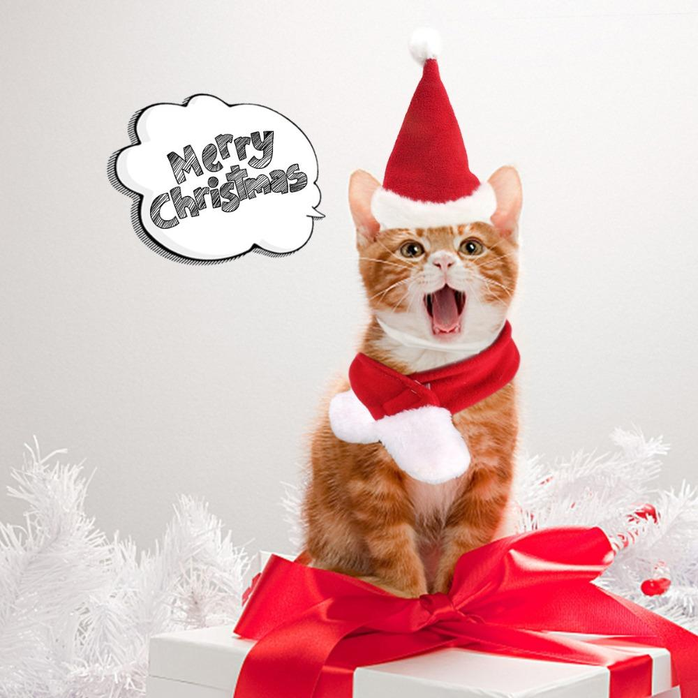 1set NEW Christmas Hat Scarf Set for Lovely Pet Cat Dog Santa Red Winter Xmas Clothes Suitable for Small Pets Puppy Costume