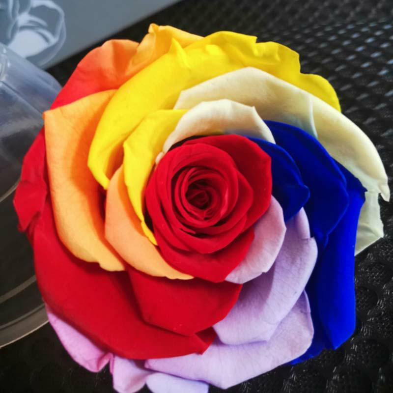 7-8cm / 3pcs, Natureza frescos, conservados Rose Flower Heads, Rose Eterna para a decoração do casamento, romântico do presente do amor