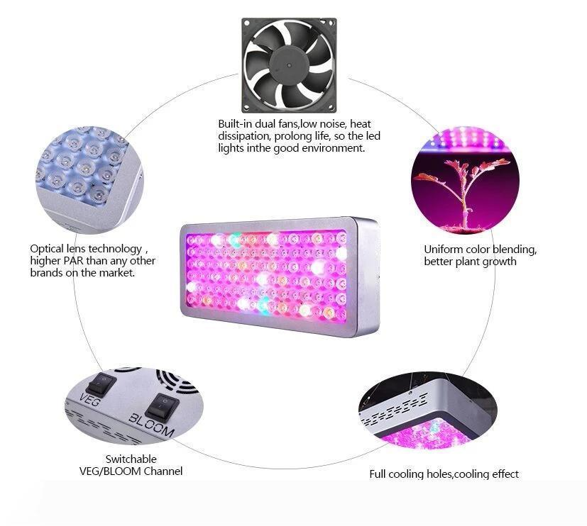 Bloomveg haute puissance élèvent la lumière 1000W LED Grow Light Panneau de lampe pour hydroponique plante qui pousse Full Spectrum