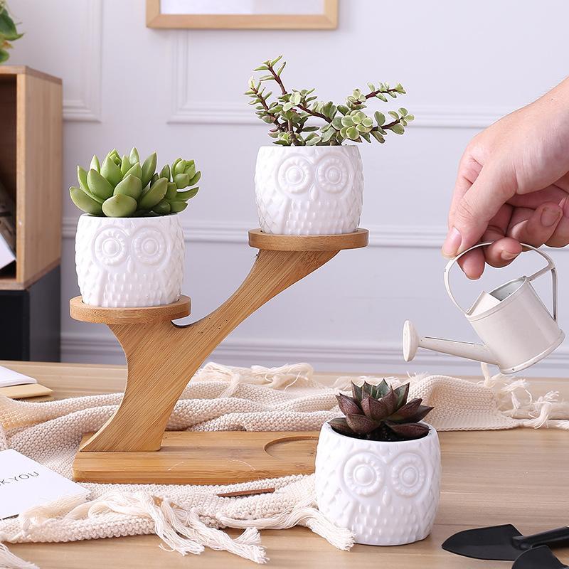 6x7x5cm 1 Set Owl Garden Pots en céramique moderne décoratif Nursery Succulent Plant Pot 3 Planters Bonsai Avec 3 bambou plateau -de base