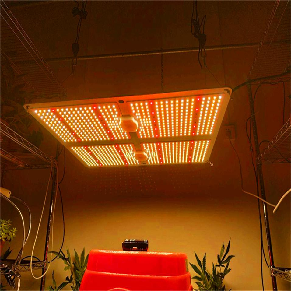 Full spectrum Samsung led grow light 1000W/2000W/4000W with LM301B 234Pcs 3000K Chips and UL Meanwell driver indoor planting