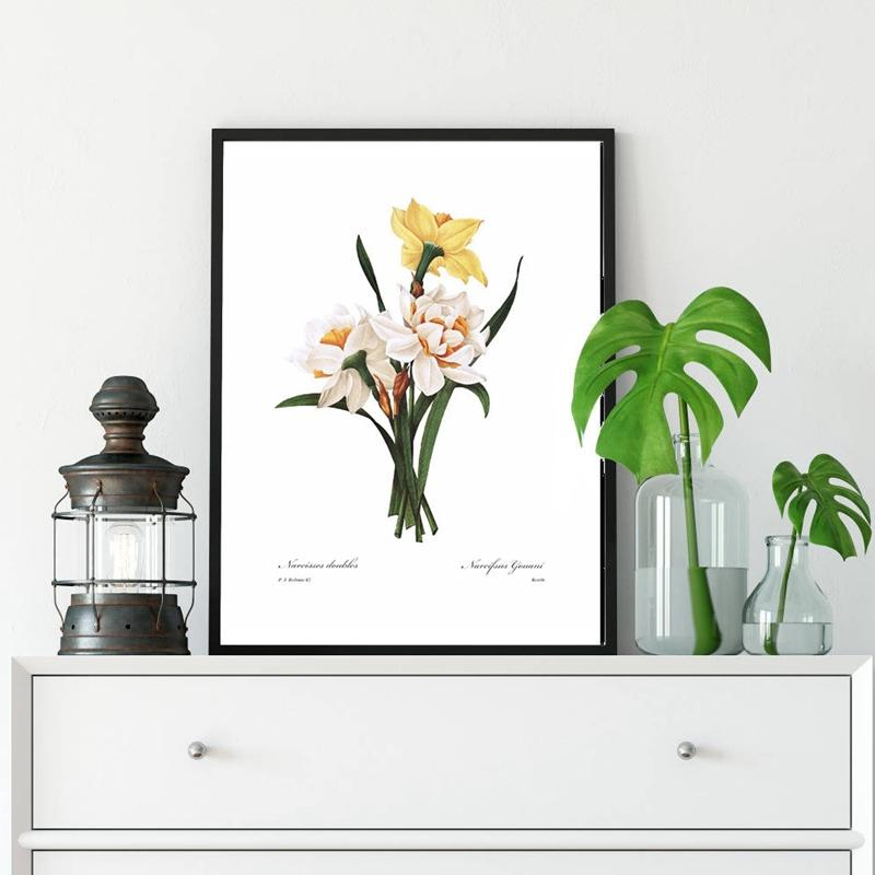 Daffodil Botanical Canvas Poster Spring Wall Decorative Picture Kitchen Cottage Bedroom Painting Prints French Living Room Decor