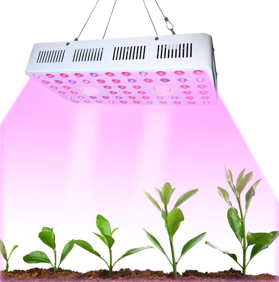 Design Optical Lens COB2000 Full Spectrum lights Double Chip High PPFD 2000W COB Led Grow Light for Indoor Plant