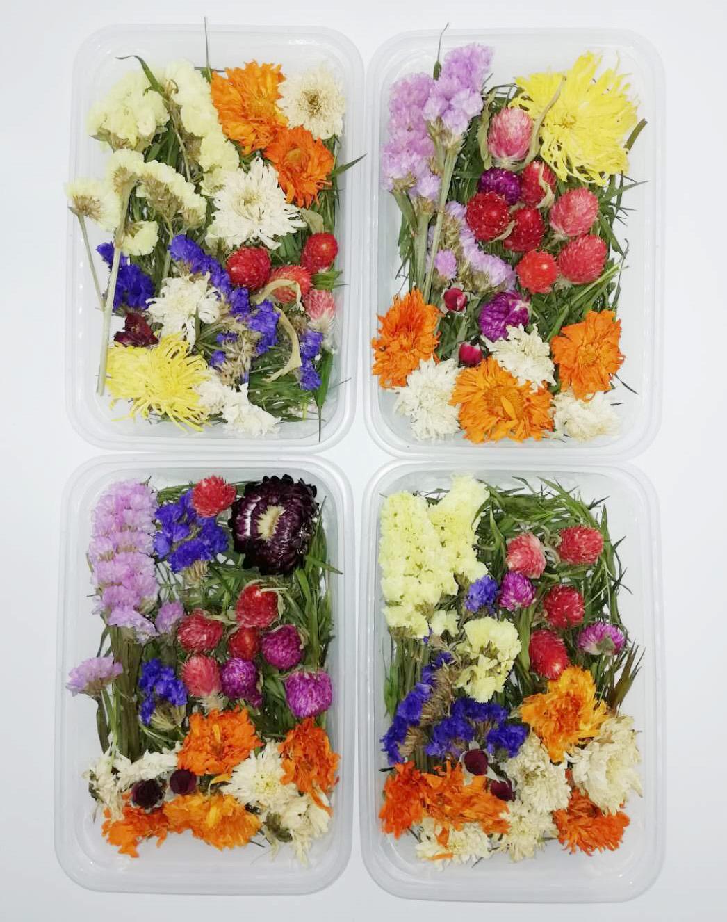 1 Kutu 30g Kurutulmuş Çiçek Gerçek Kuru Bitkiler Aromaterapi Mum Craft DIY Aksesuarları Yapımı İçin Çiçek Preslenmiş
