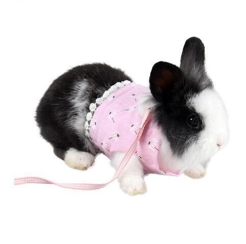Kleine Haustier-nette Kleidung Chinchilla Brustgurt mit Traction Rope Set Dutch Pigs Ziehen des Seilkleintiere Comfort Vest GB1358