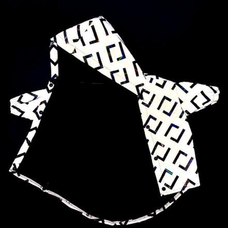 Cappotto di giacca per cani riflettenti di lusso Cappotto all'aperto Antivento Antivento Abbigliamento per cani Sport Dog Hoodie Bulldbreaker Bulldog Chihuahua PET Vestiti T200710