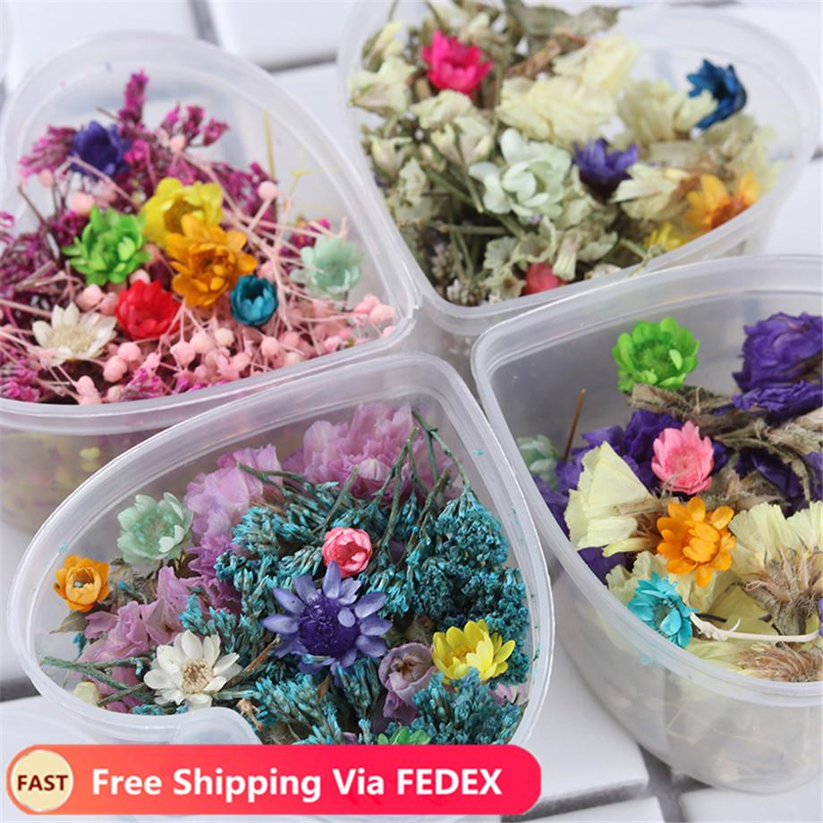 Dried Flowers 24 Colors Flower Nail Decorations Natural Floral Sticker 3D Dry Beauty Nail Art Decals For UV Gel Polish