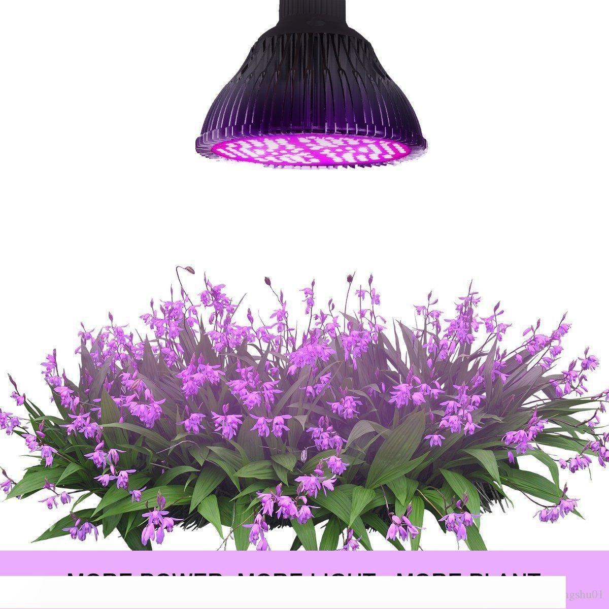 8W 10W 30W 50W 80W lampada pianta principale spettro completo sviluppo di pianta luce principale piantatura lampada serra riempimento