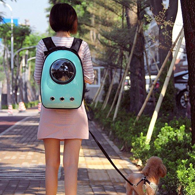 Portable Pet Backpack Space Capsule Pet Backpack Waterproof Pet Backpacks Bubble Design For Cat And Small Dog Pet Care Supplies Pet Care Supplies Online From Qigrif 53 46 Dhgate Com