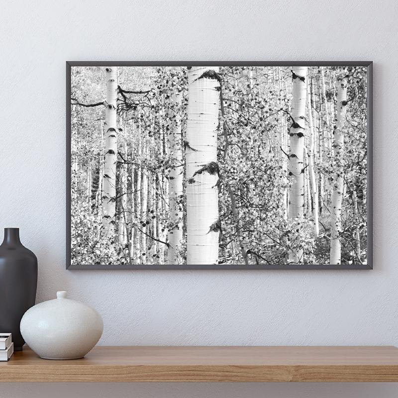 Birch Tree Forest Art Print Farmhouse Decor Black and White Rustic Wall Art Canvas Painting Nordic Poster Wall Picture for Home