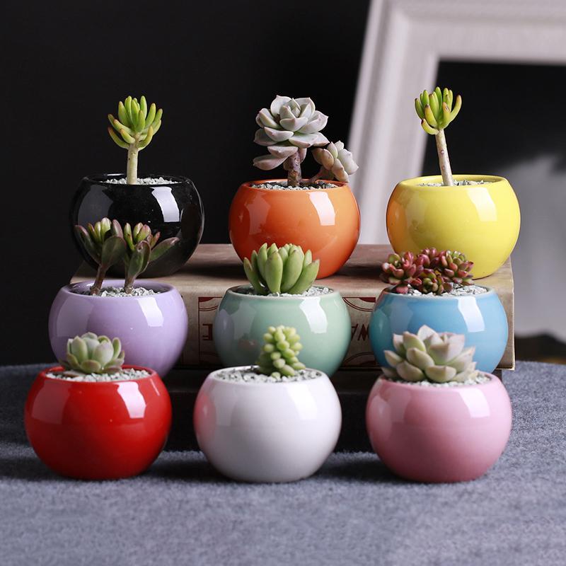 9 ألوان السيراميك الأواني العصارة اناء للزهور الكرة الصغيرة جولة البورسلين الأبيض أبيض اللون البسيطة الإبداعية DHB524