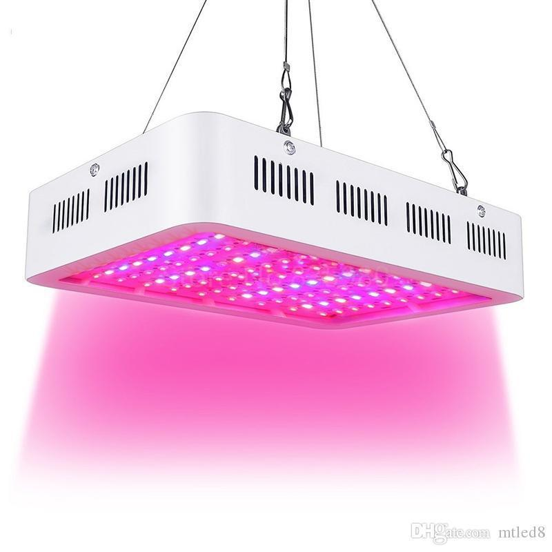 LED Grow Light 1000W Double Chip Full Spectrum pour l'intérieur Aquario hydroponique usine de fleurs LED Grow Light High Yield
