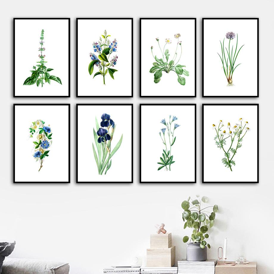 2021 Wall Art Canvas Painting Daisy Bluebell Basil Aster Herb Nordic Posters And Prints Wall Pictures For Living Room Kitchen Decor From Haloqueen 9 77 Dhgate Com