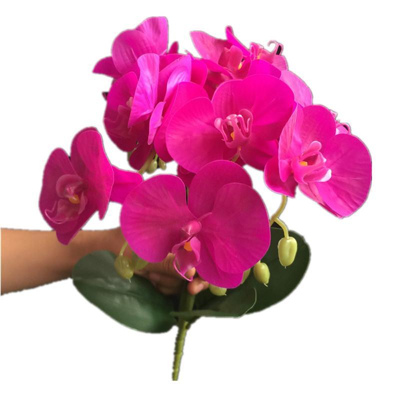 """Поддельная Реальная сенсорный PU Орхидея (5 стеблей / пучок) 16,54"""" Моделирование Phalaenopsis Green Leaf для свадебных дома Декоративных Искусственных цветов"""