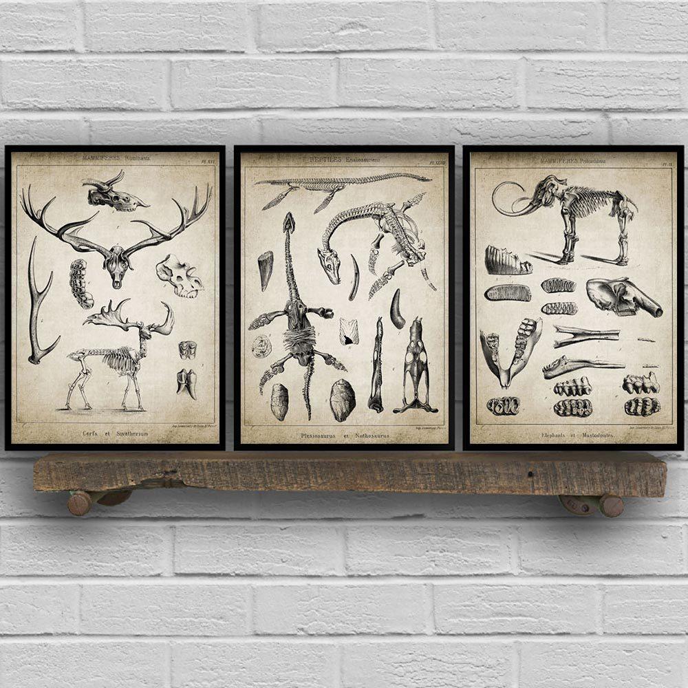 Динозавр слон Deer Патентный Vintage печати животных Ископаемые скелеты Canvas Art Poster Wall Pictures Chemistry Room Home Decor